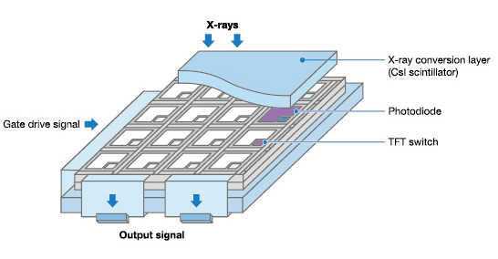 Technology Introduction X-ray Flat Panel Detector Canon Electron Tubes &  Devices Co., Ltd.